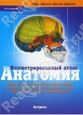 Анатомия.Иллюстрированный атлас