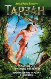 Тарзан – приемыш обезьяны. Возвращение Тарзана в джунгли