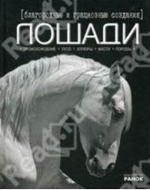 Благородные и грациозные создания – лошади